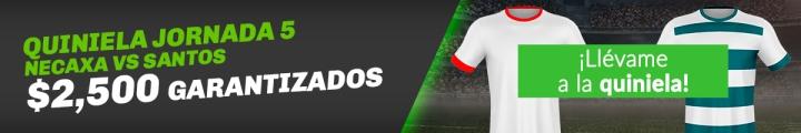 Boton Blog Liga MX Jornada 5 Necaxa vs Santos